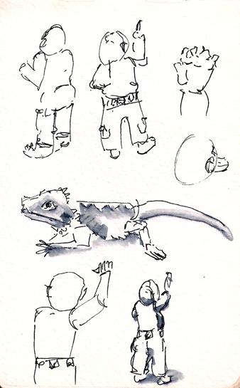zev sketches