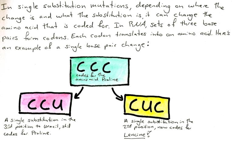 culex 3