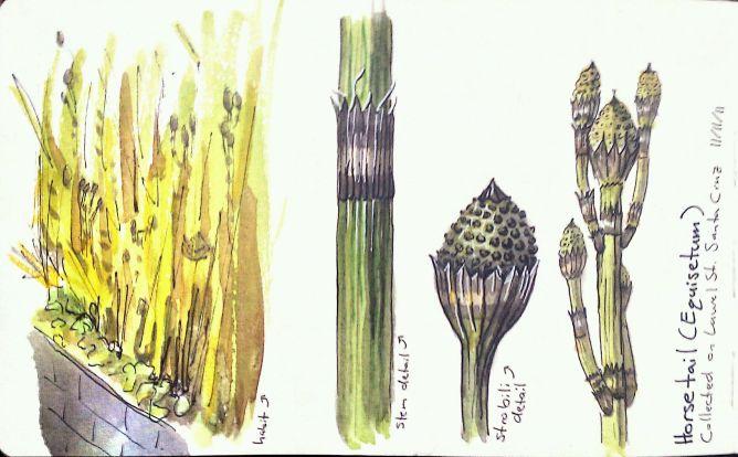 2011-11-11_16-24-08_866 copy