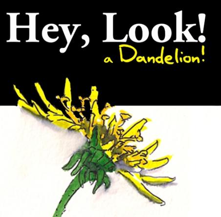 Dandelions Coverpromo.jpg