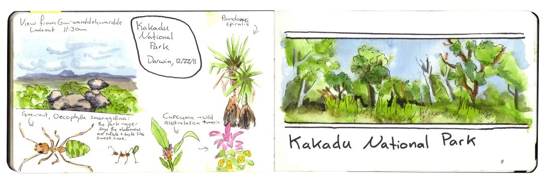 Kakadu edited.jpg