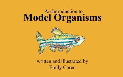 Page 1 - Model Organism Boook copy.jpg